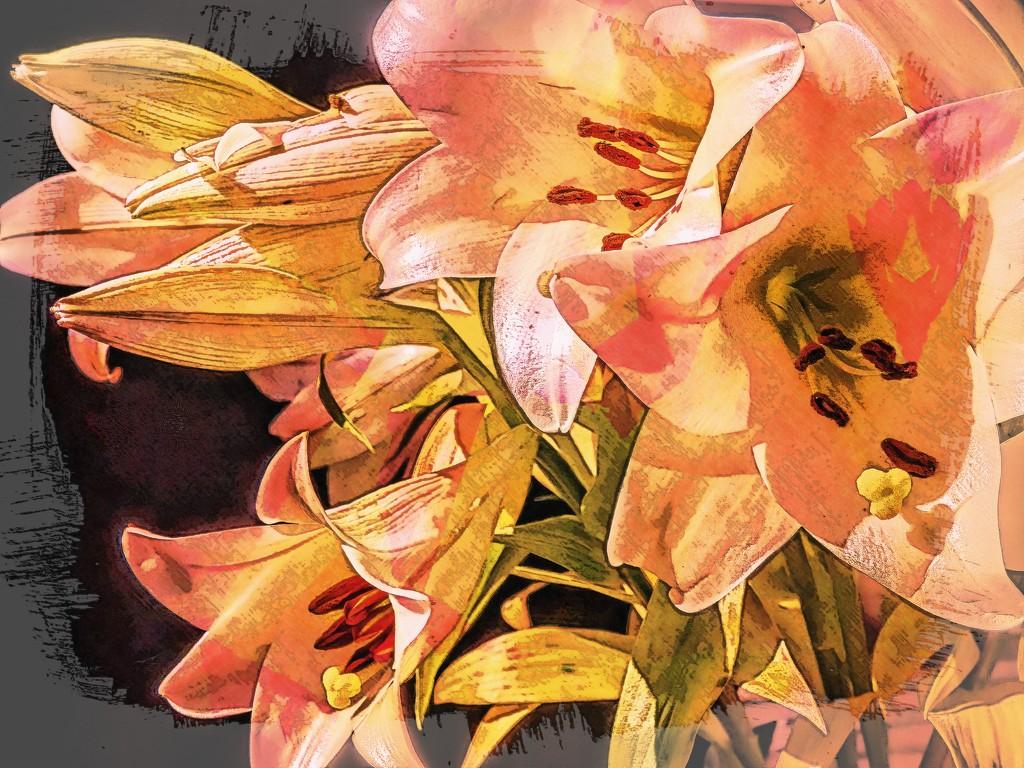 My favourite Lillies by ludwigsdiana