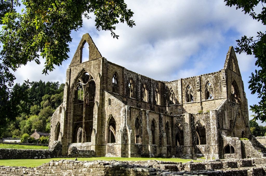Tintern Abbey by clivee