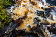 14th Sep 2020 - Peaty Water