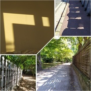 14th Sep 2020 - Shadows and shapes of the day