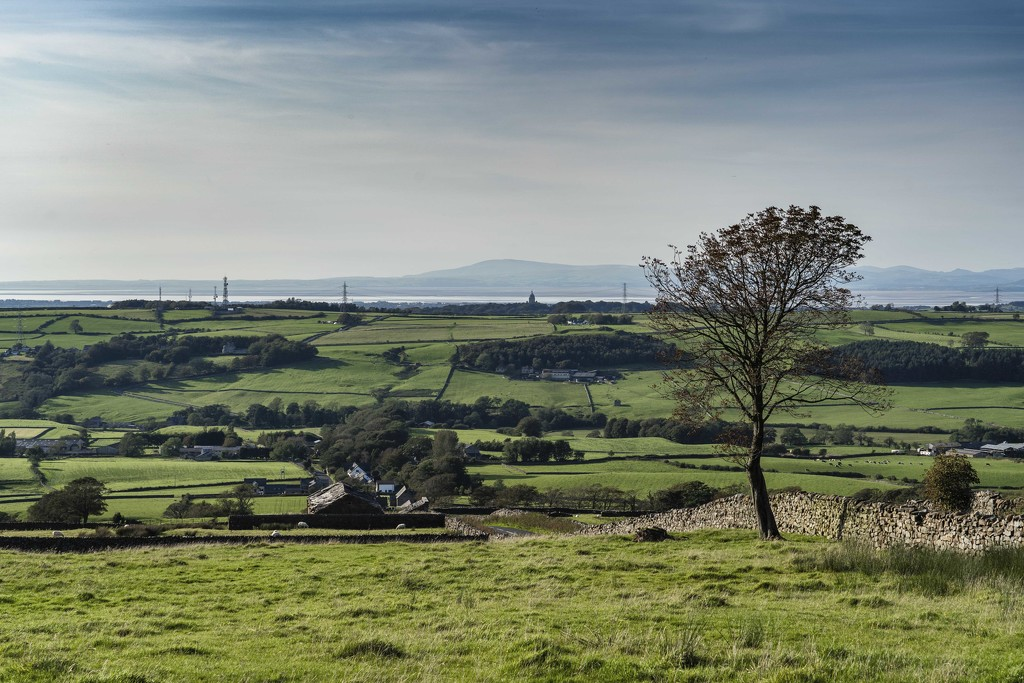 Quernmore Brow View. by gamelee
