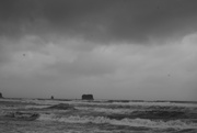 15th Sep 2020 - Stormy today