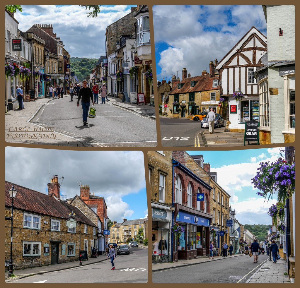 STREET VIEWS,SHERBORNE by carolmw