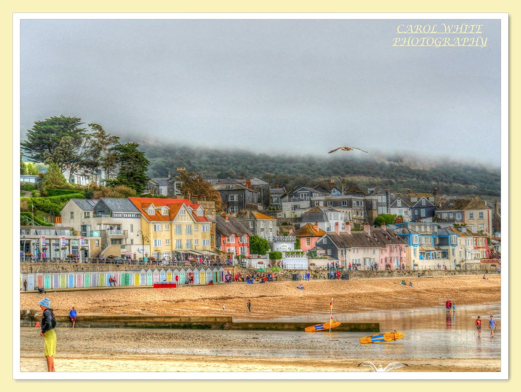 On The Beach,Lyme Regis by carolmw