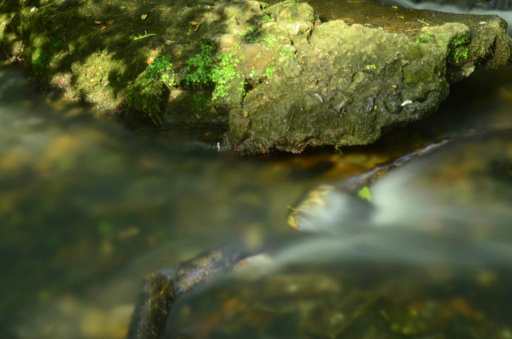Little Stream sooc by fbailey