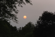 14th Sep 2020 - wildfire haze