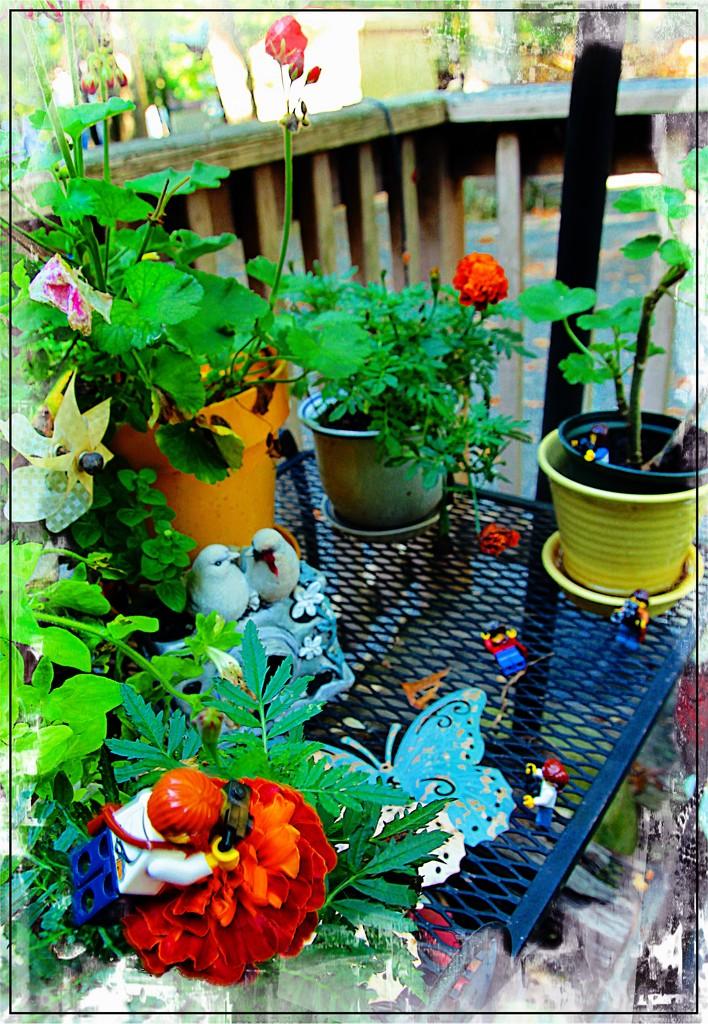 Garden by olivetreeann