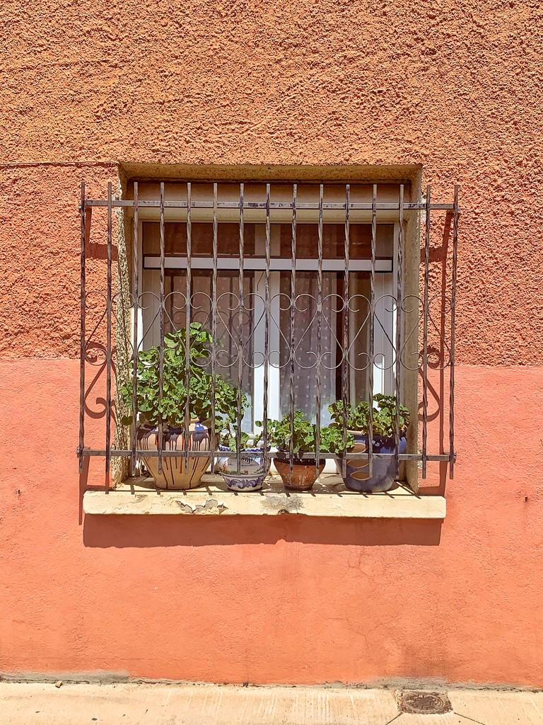 Hearts and orange walls.  by cocobella