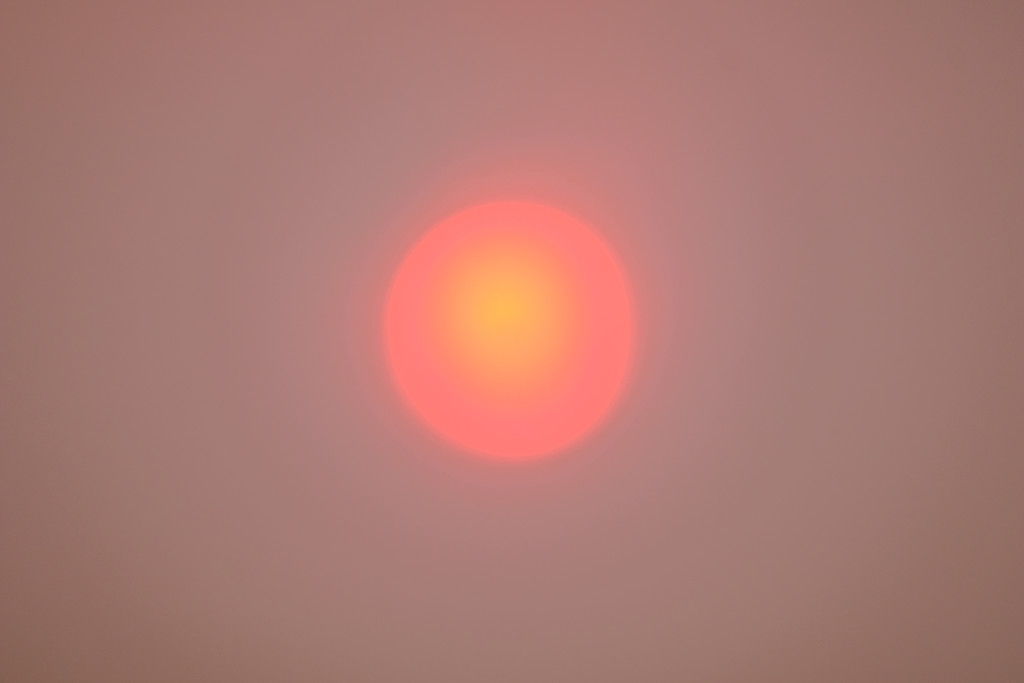 Wildfire Sun by tosee