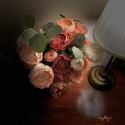 16th Sep 2020 - Floral Glow