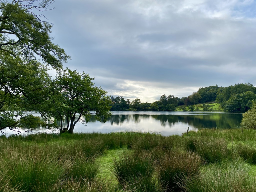 Loughrigg Tarn by tinley23