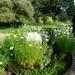 Circles Garden