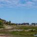 A Walk on the Wetlands Side