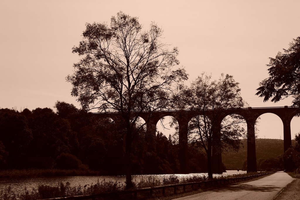 Railway Viaduct at Port Launay... by vignouse