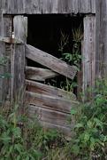 16th Sep 2020 - Broken Barn Door  - nf-sooc-2020