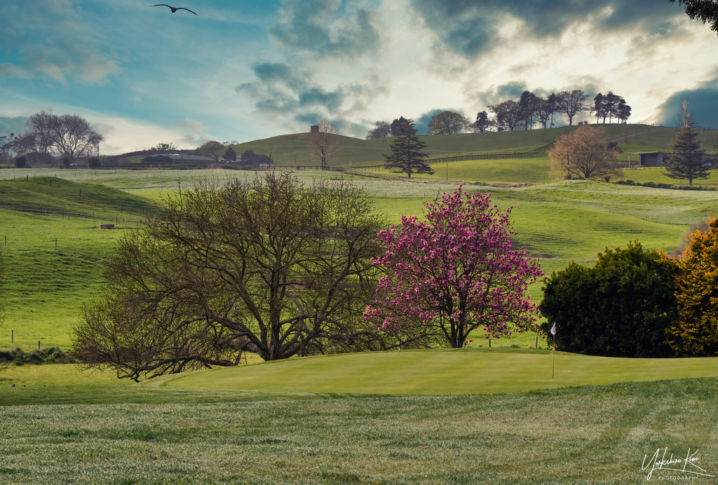 34 Holes by yorkshirekiwi