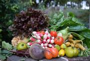 12th Sep 2020 - eat vegetables!