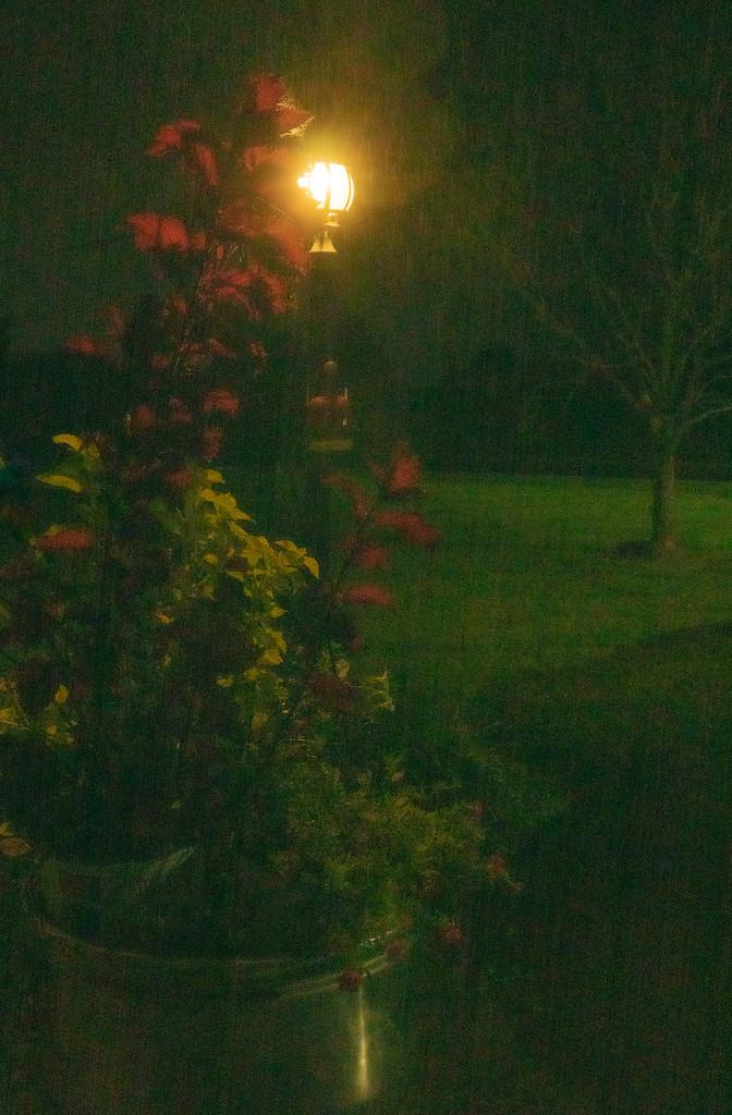 Rainy night by randystreat