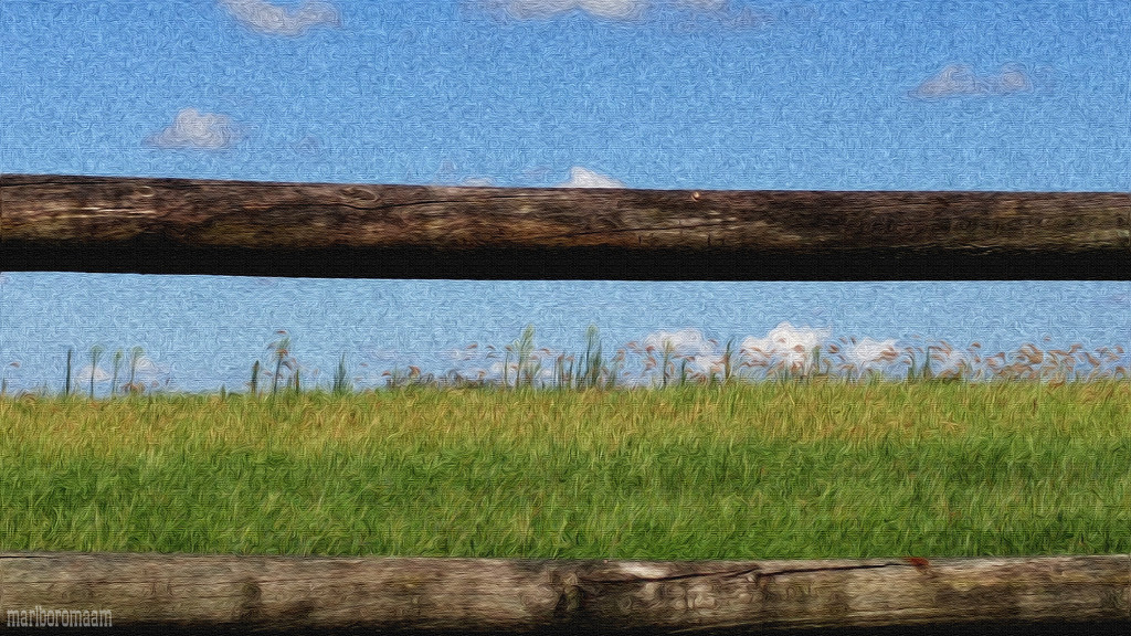 Painted Fence and Field by marlboromaam