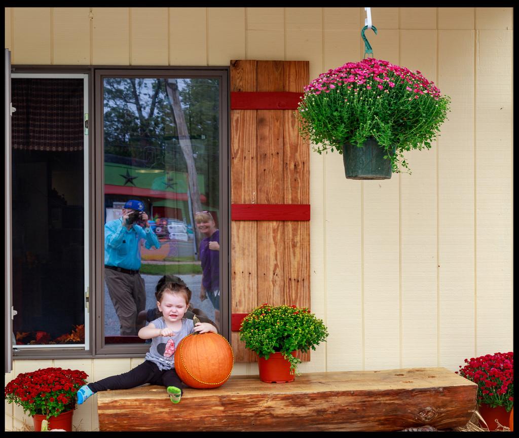 Fall Display by hjbenson