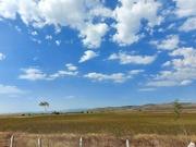 16th Sep 2020 -  Blue skies