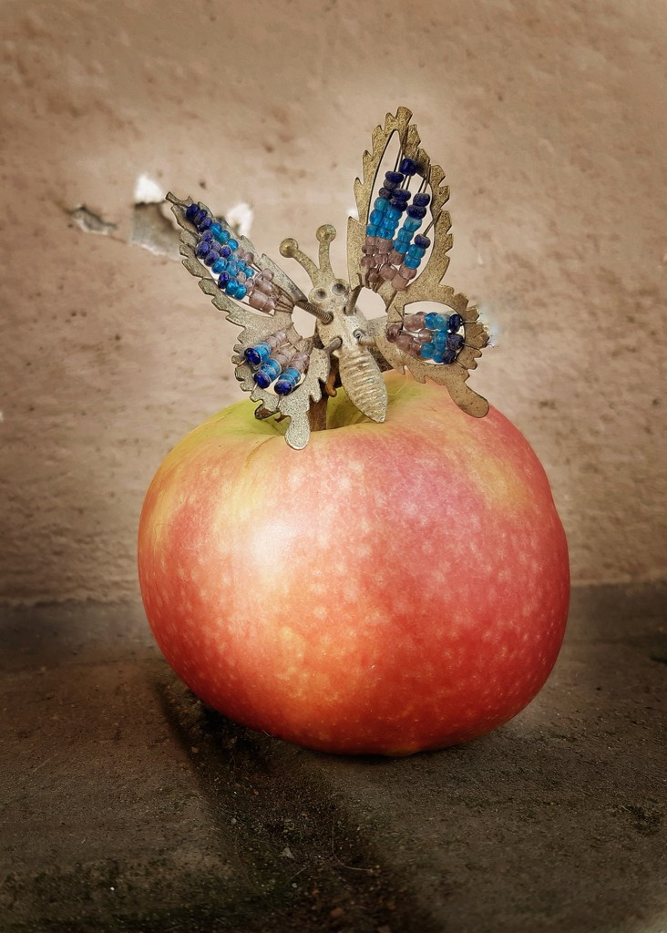 An Apple and a Butterfly  by salza