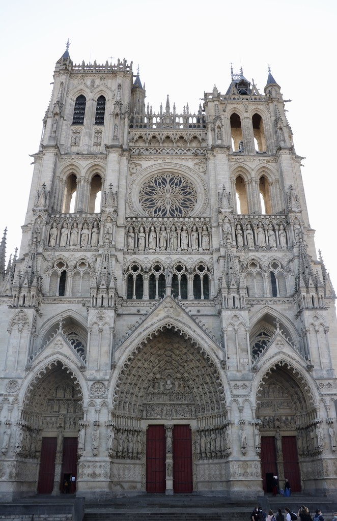Notre Dame, Amiens by momamo