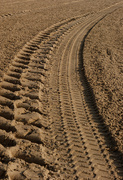 18th Sep 2020 - 0918 - Tracks in the sand