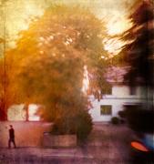 7th Sep 2020 - autumnal sunset