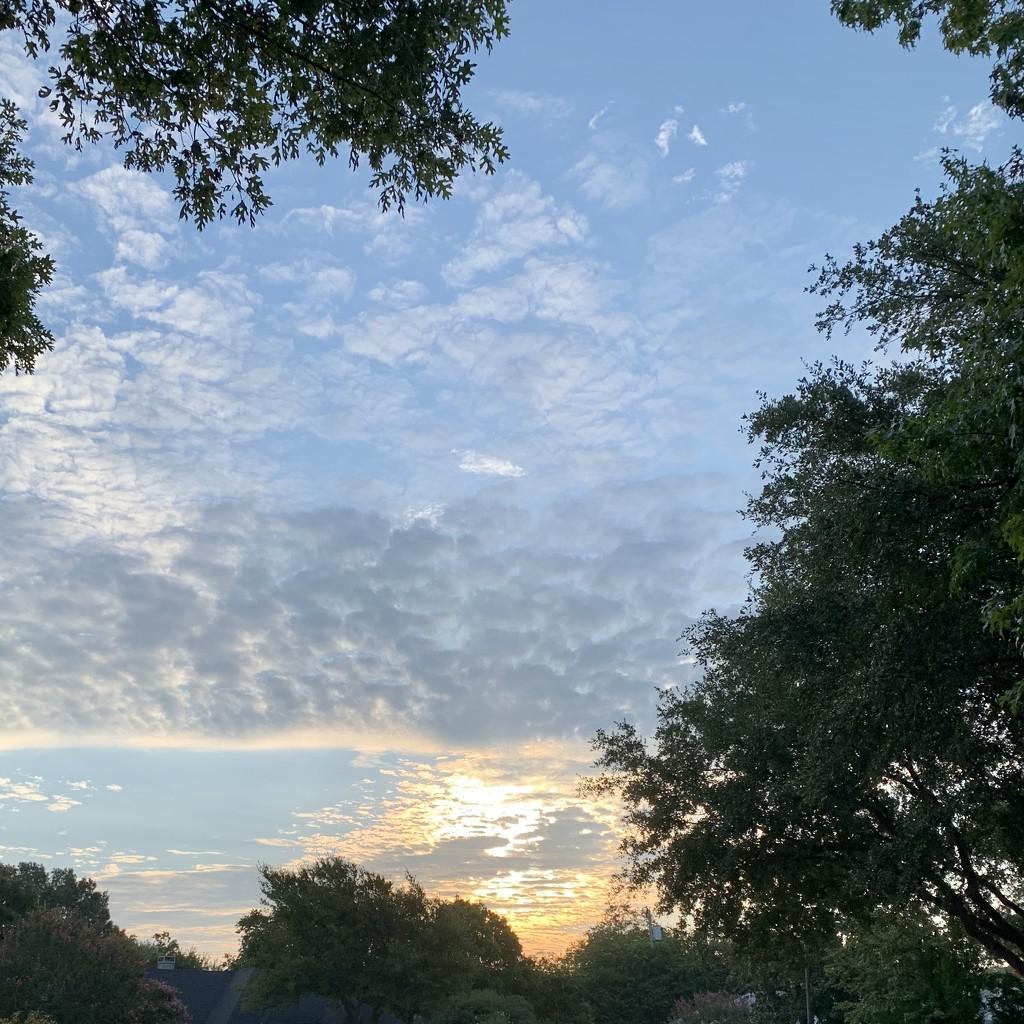 Sunrise by louannwarren
