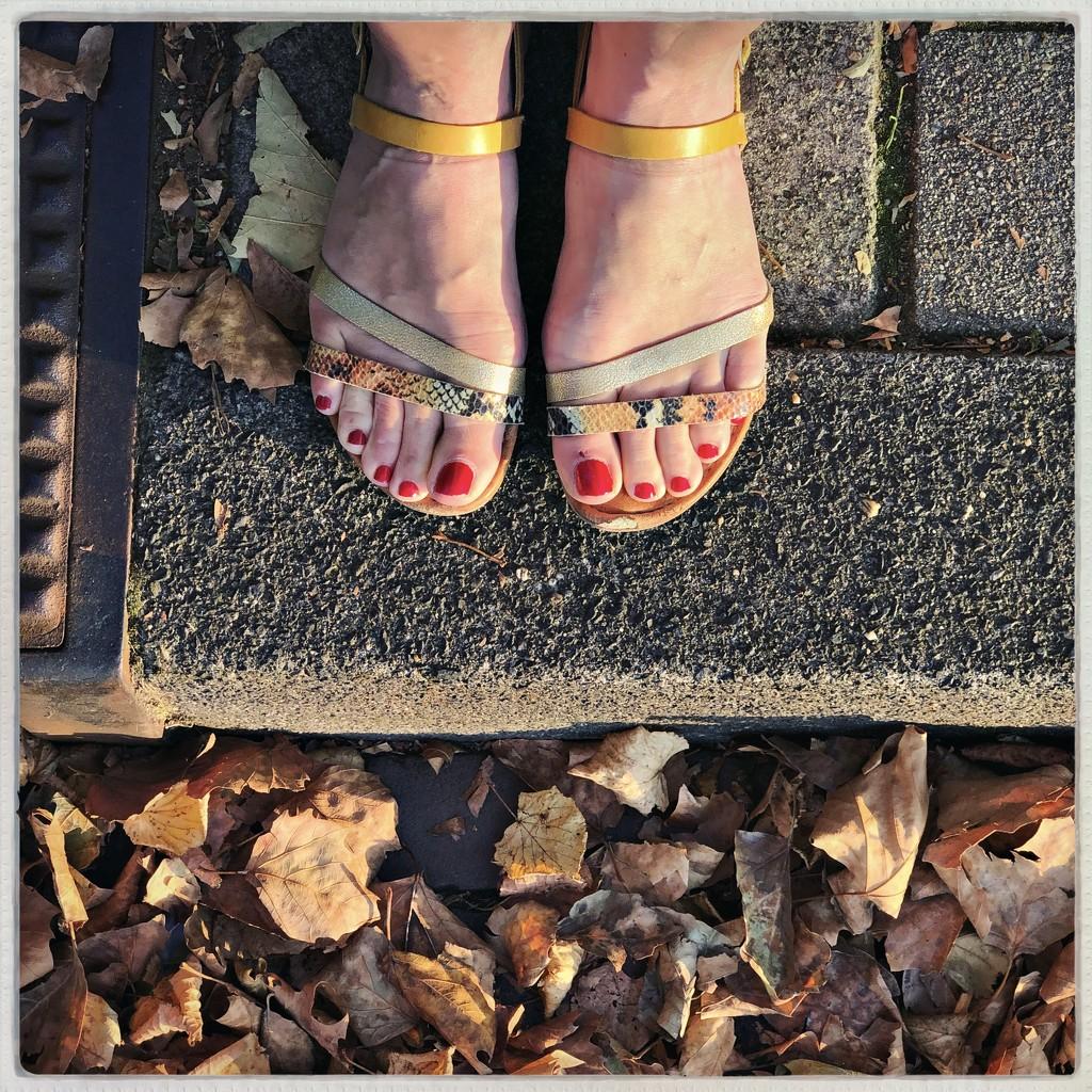 Sunny September by mastermek