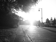"14th Sep 2020 - SOOC ""street"""
