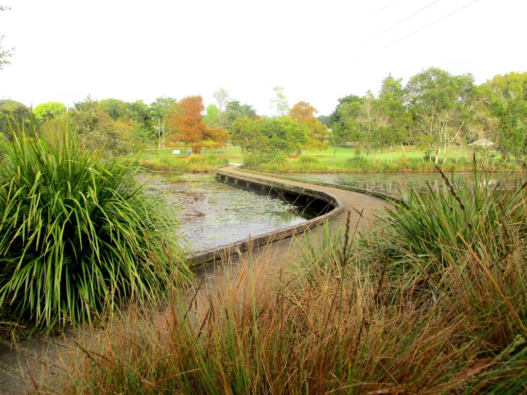 Bridge over the Lilly  pond  Mapleton by 777margo