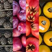 20th Sep 2020 - 20. Fruits of the season