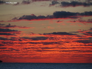 18th Sep 2020 - Red Sky in the Morning