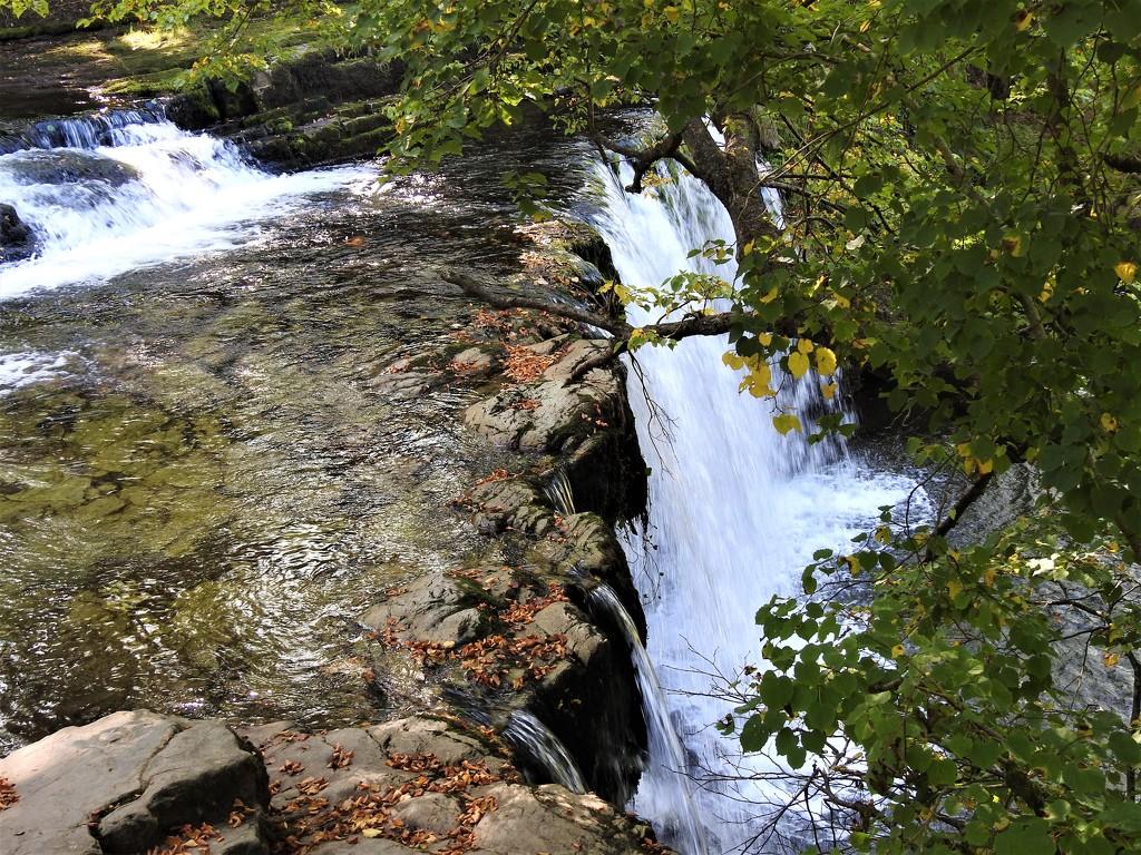 Waterfall Walk 1 by susiemc