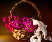 20th Sep 2020 - fresh flowers