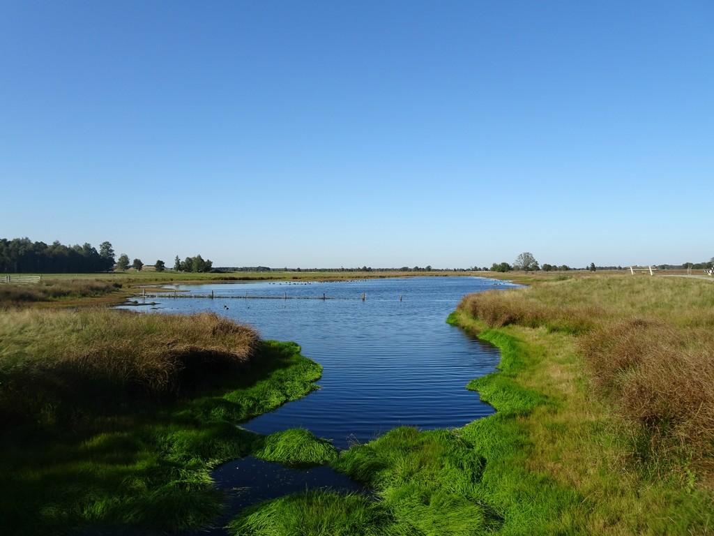 nature reserve by gijsje