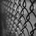 fence (sooc)