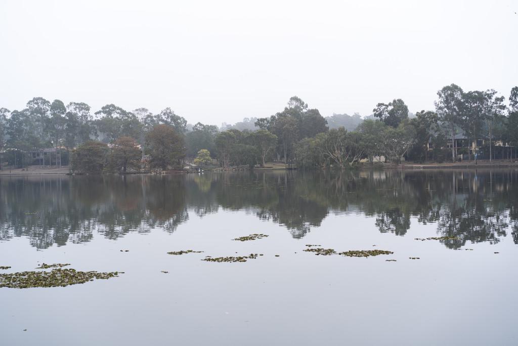 The Lake by sugarmuser
