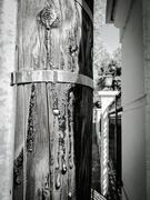 20th Sep 2020 - Tar on a pole
