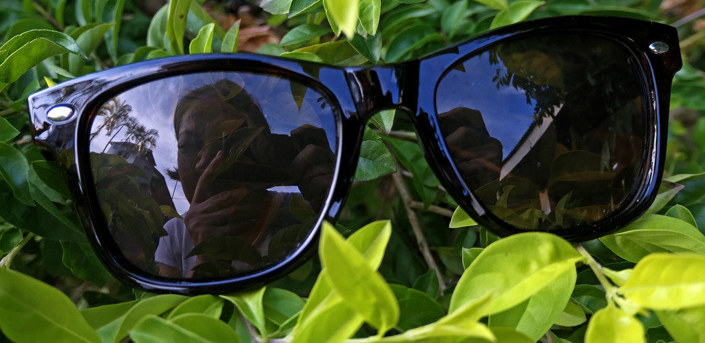 Sunglasses by lilh