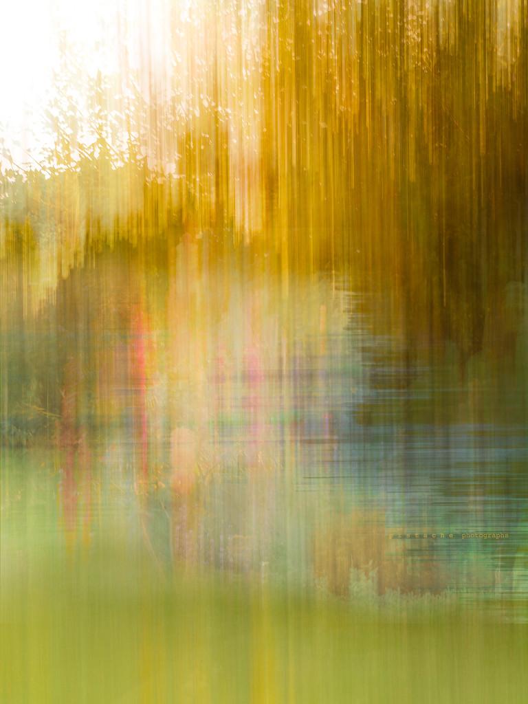 autumn rain by pistache