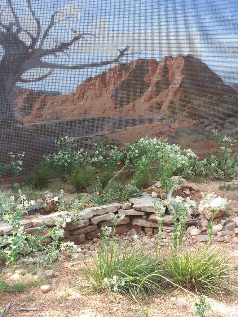 Amarillo Botanical Gardens 3 by missjenn