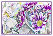 18th Sep 2020 - Fall Bouquet - Art