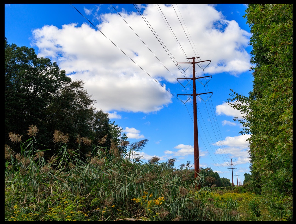 Along the Power Lines by hjbenson