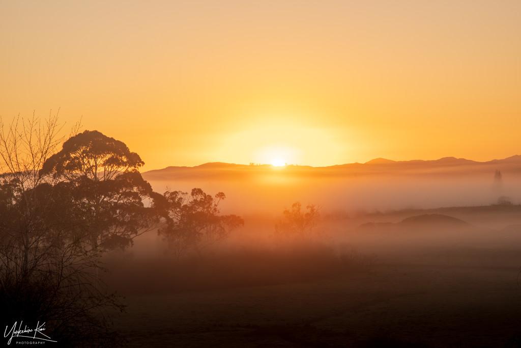 Sunrise and mist by yorkshirekiwi