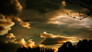 22nd Sep 2020 - The Sky speaks..