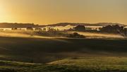 22nd Sep 2020 - Foggy Morning