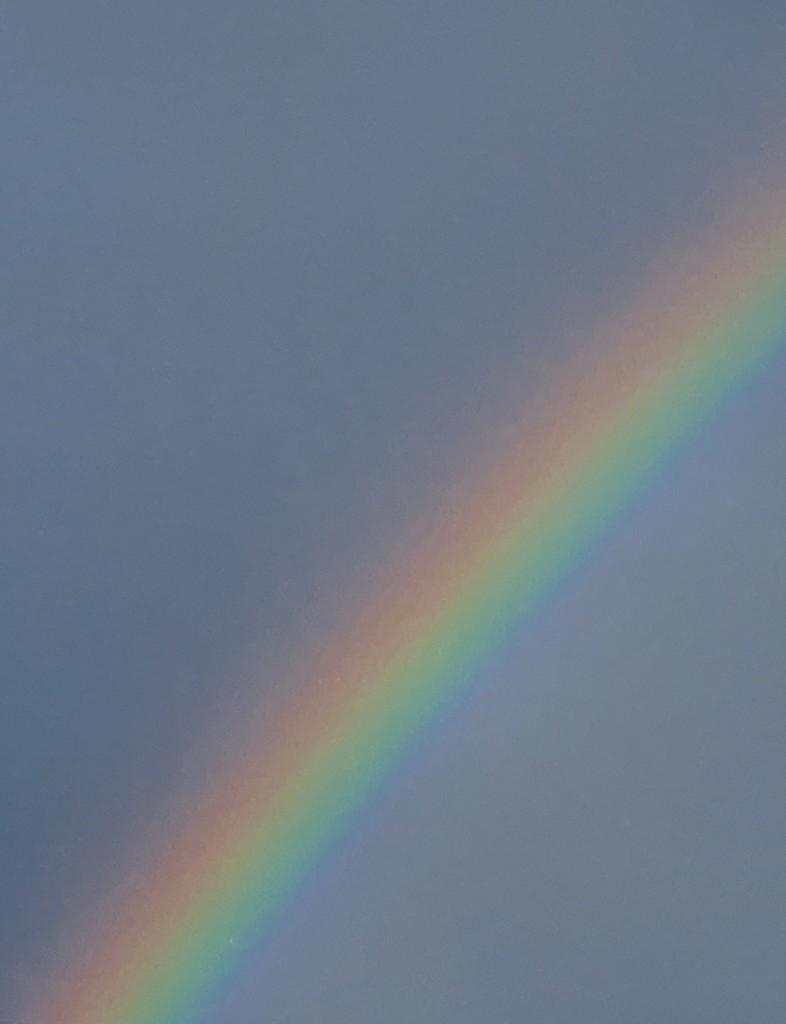 20200922_172009 rainbow by summeradelaide